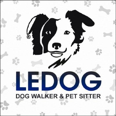 Ledog Dog Walker