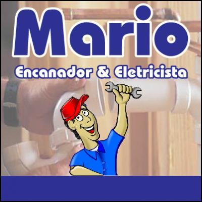 Mario Encanador e Eletricista