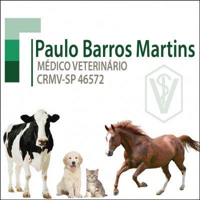 Paulo Barros Martins