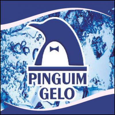 Pinguim Gelo Festas e Eventos