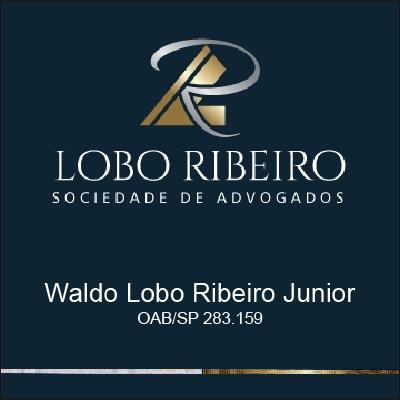 Waldo Lobo Ribeiro Júnior Advogado